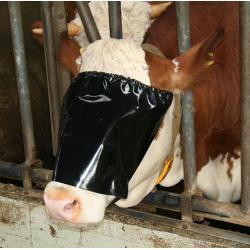 Viehblende mit Elastikseil