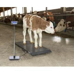 Tierwaage PS1000 bis 500kg
