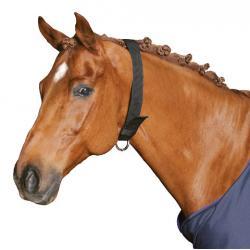 Halsriemen Pferd