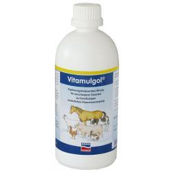 Vitamulgol Liquid 500ml